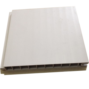 Factory wholesale Easy Install Ceiling Panel -